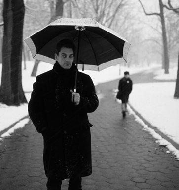 Auster and Umbrella 2